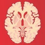 Brain picture - red